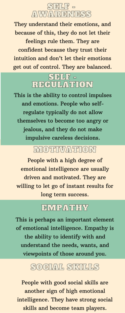 emotional intelligence meaning